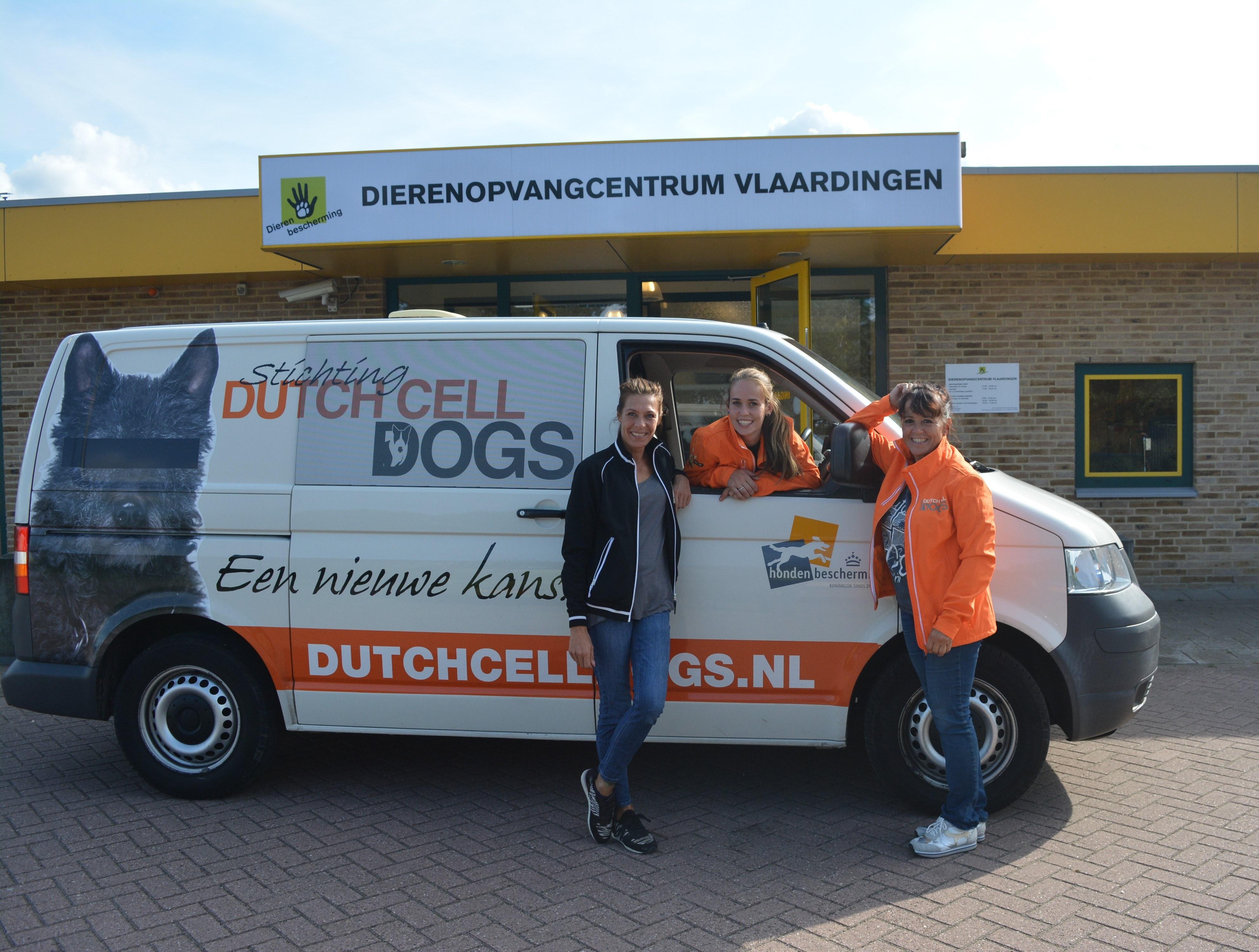 Samenwerking Dutch Cell Dogs